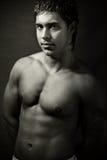 Sexy knappe spier jonge mens stock fotografie