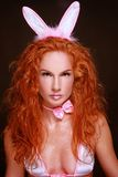 Sexy konijn Royalty-vrije Stock Foto