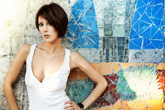 Sexy lady. Sexy brunette lady in white shirt standing near a brick wall Stock Image