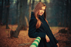 lady portrait at fall forest Royalty Free Stock Photo