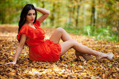 Sexy lady in red dress Stock Photography
