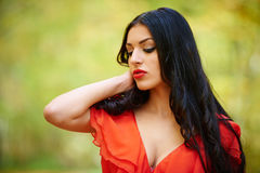 Sexy lady in red dress Stock Images