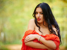Sexy lady in red dress Royalty Free Stock Image