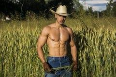 Sexy landbouwer of cowboy naast hooigebied stock afbeelding