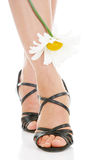 legs with camomile stock photo