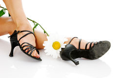 legs with camomile royalty free stock photos