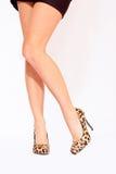 Sexy legs elegant shoes Royalty Free Stock Photos