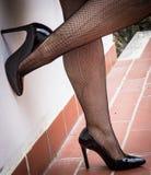 legs in fishnet stockings royalty free stock photo