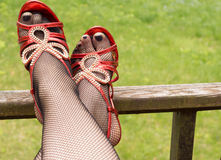 Sexy legs in fishnet stockings Royalty Free Stock Images