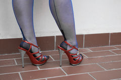 Sexy legs in fully fashioned stockings Stock Image