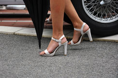 Sexy legs in high heels. Woman's legs in white high heels on the street Royalty Free Stock Image