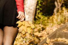 Legs in the park. Part of body people autumn concept. legs in the park. Woman has black skirt and holding leaves in hand royalty free stock images