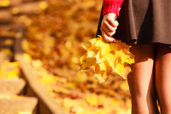 Legs in the park. Part of body people autumn concept. legs in the park. Woman has black skirt and holding leaves in hand royalty free stock photo