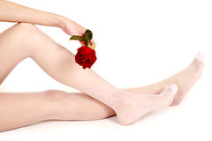 Sexy legs with rose Stock Photo