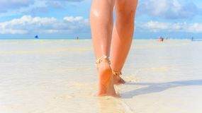 Beach travel concept. Sexy Legs on Tropical Sand Beach. Walking Female Feet. Closeup. Sexy Legs on Tropical Sand Beach. Walking Female Feet. Closeup Stock Photography