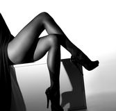 Sexy legs of a young woman in black stockings Stock Images