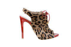 Sexy leopard shoes Royalty Free Stock Photos