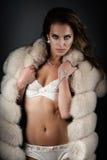 Sexy lingerie in fur coat Stock Image