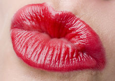 Sexy Lips Stock Photos