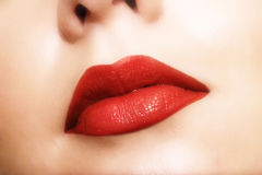 Lips. Close-up of woman's sexy, red lips. I will be very happy if you let me know when you use this image in your project Stock Images