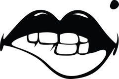 Sexy lips Stock Image
