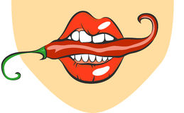 Sexy lips with red hot chili pepper. Pop art mouth biting spice. Close up view of cartoon girl eating flavouring. Vector illustrat Stock Images