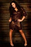 Sexy long brown hair fashion woman. Sexy long brown hair fashion model woman in tight brown leather dress Royalty Free Stock Photos