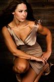 Sexy long brown hair fashion woman. Sexy long brown hair fashion model woman in tan short dress Stock Photo