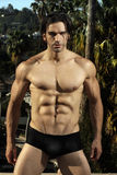 Male fitness model outdoors. Body portrait of a male fitness model in black briefs with muscular chest and six pack abs against lush outdoor background Stock Image