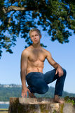 Sexy male model Stock Images