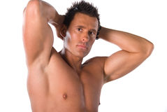 Sexy male model. Stock Photography