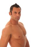 Male muscular model. On white background Stock Image