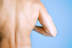 Sexy man back Royalty Free Stock Images