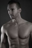 Sexy man shirtless Stock Images
