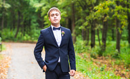 Sexy man in tuxedo and bow tie posing Stock Image