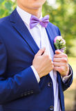 man in tuxedo and bow tie posing royalty free stock photography