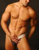 Sexy mannetje in ondergoed stock afbeeldingen