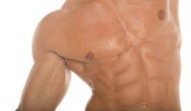 sexy mięśnie brzucha sixpack Fotografia Royalty Free