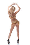 Sexy model in golden costume posing back to camera. Sexy young model in golden costume posing back to camera Royalty Free Stock Photos