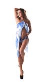 Sexy model posing in blue swimsuit with pareo Stock Photo