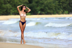 Sexy model posing at tropical beach Stock Photography