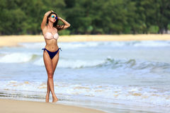 Sexy model posing at tropical beach Royalty Free Stock Image