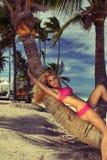 Sexy Modell des blonden Haares mit festem Körper und perfekte Zahl, Lügen in einem Bikini auf einer Palme Stockfoto