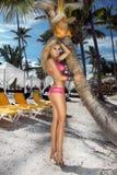 Sexy Modell des blonden Haares mit festem Körper und perfekte Zahl, Lügen in einem Bikini auf einer Palme Stockbild