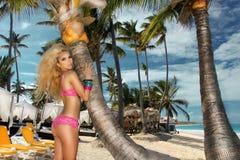 Sexy Modell des blonden Haares mit festem Körper und perfekte Zahl, Lügen in einem Bikini auf einer Palme Lizenzfreies Stockbild