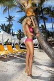 Sexy Modell des blonden Haares mit festem Körper und perfekte Zahl, Lügen in einem Bikini auf einer Palme Lizenzfreie Stockfotografie