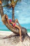 Sexy Modell des blonden Haares mit festem Körper und perfekte Zahl, Lügen in einem Bikini auf einer Palme und im Hintergrund ist  Lizenzfreies Stockbild