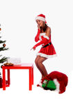 Sexy Mrs. Santa. Sexy Ms. Santa Claus standing by the Christmas tree with milk and cookies Stock Image