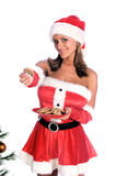 Sexy Mrs. Santa. Sexy Ms. Santa Claus  by the Christmas tree with a plate of chocolate chip cookies and offering one to the camera Royalty Free Stock Image