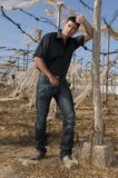muscled man with jeans Stock Photography